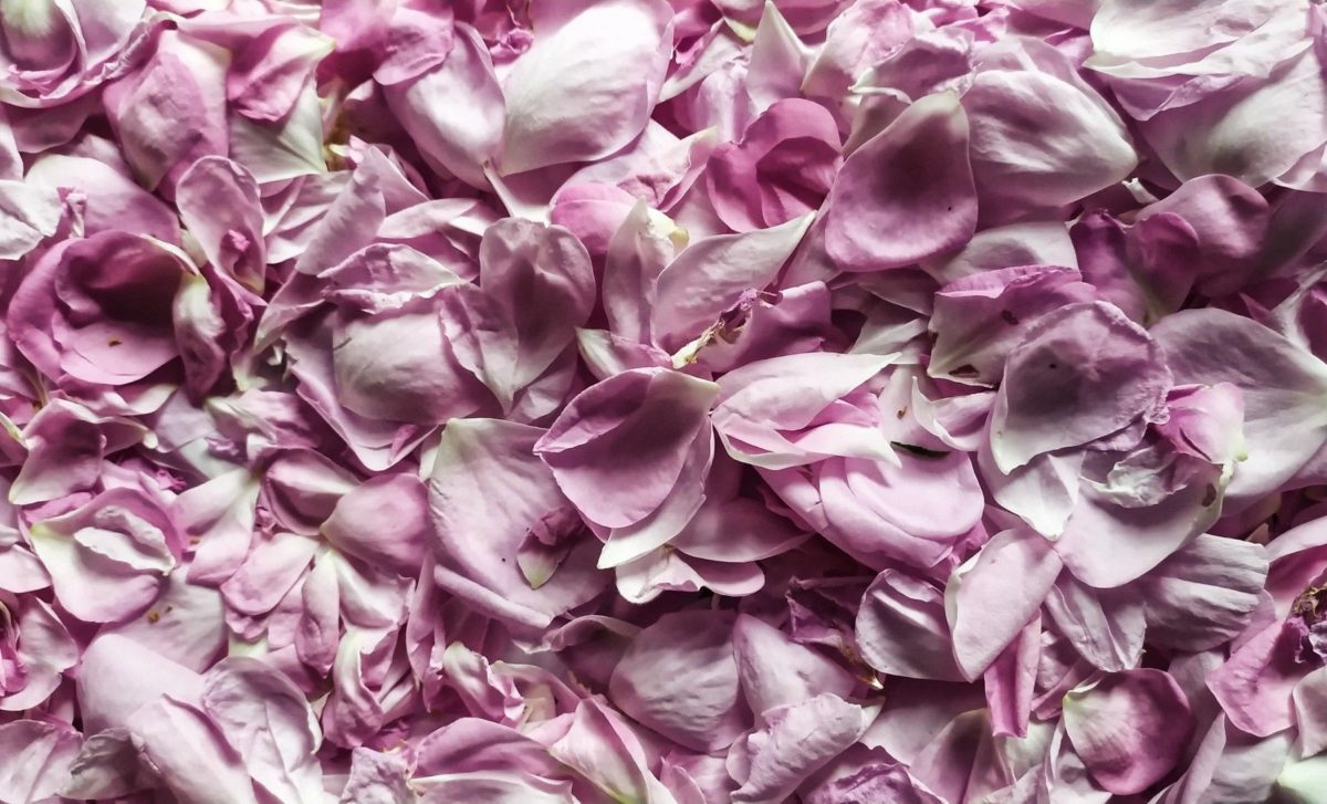 homemade beauty products with rose petals rose water